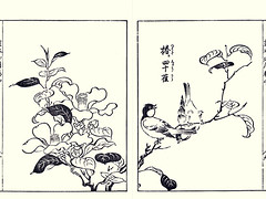 Camellia and great tit (Japanese Flower and Bird Art) Tags: flower bird art japan japanese book major tit great picture camellia japonica kano woodblock parus theaceae nakaji paridae sadatoshi readercollection