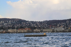 stormy weather (William Sc) Tags: lake weather wind stormy zrichsee