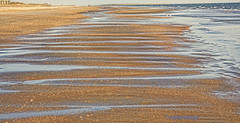 Carolina Coastal Sand (creepingvinesimages) Tags: ocean seagulls beach water outdoors coast sand nikon surf northcarolina pebbles textures shore topaz autofocus crystalcoast d7000 adjust5 pse11