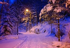 Snowy path (T.Lattu) Tags: winter snow evening winterwonderland bluemoment