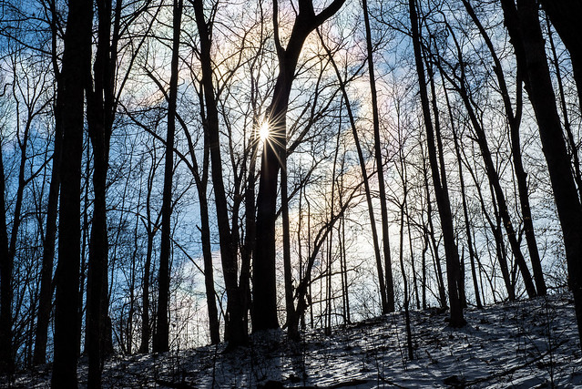 Hoosier National Forest - Pate Hollow Trail - January 24, 2016