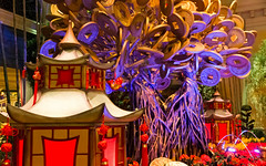 Bellagio_Chinese New Year-16 (Swallia23) Tags: las vegas flowers money hotel peach chinesenewyear casio nv bellagio yearofthemonkey 2016 conservatorybotanicalgarden