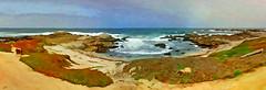 pt pinos asilomar beach (Sunnyvaledave) Tags: beach calif asilomar ptpinos