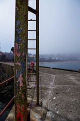 Eyemouth (rachappleby) Tags: misty harbour northumberland weathered ladder eyemouth coastalphotography