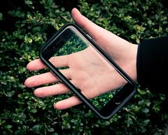 40/366 (phillipgaede) Tags: berlin green nature canon 50mm bush hand potd smartphone 365 grn transparent busch iphone transparenz 366 unschrfe projekt366 eos600d