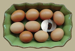 first look... (firstlookimages.ca) Tags: art digitalart surreal eggs digitalmanipulation hss trayofeggs artisticmanipulation