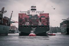 Al Zubara (Dennis Kahl Fotografie) Tags: deutschland see al meer fotografie hamburg dennis hafen schiff kahl kontainer zubara