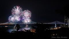 View from Coit Tower - Bay Lights Re-Lighting and Super Bowl City Fireworks Show - 013016 - 14 (Stan-the-Rocker) Tags: sanfrancisco sony coittower northbeach embarcadero ferrybuilding telegraphhill nex sanfranciscooaklandbaybridge sfobb sb50 baylights sel1855 stantherocker