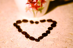 I Love coffee - und Du? (Ernie :+)) Tags: coffee nikon dof heart bokeh kaffee herz coffeebean tiefenschrfe afsvrmicronikkor105mmf28gifed kaffebohne d7k d7000 nikond7000