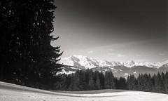 Combloux, Mont Blanc, 7 (Patrick.Raymond (2M views)) Tags: france montagne alpes la nikon tmax paca neige cry savoie haute argentique combloux expressyourself