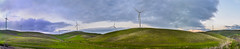 vasco road wind farm panorama (pbo31) Tags: california winter sunset sky panorama color green nikon farm country over large panoramic eastbay february livermore stitched 2016 contracostacounty boury pbo31 d810