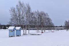 DSC_0017 (arto hkkil) Tags: bridge snow ice beach finland oulu lumi birchtrees ranta j  silta     koivut pukukoppi