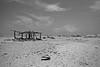 Echo Beach (Walt vd Hoeven) Tags: summer beach netherlands strand muffins sand martha echo nederland aruba zomer caribisch