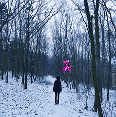 RiSE (MonieHoleva) Tags: wood pink blue winter light dog snow nature girl fashion animal dark landscape happy nikon forrest outdoor fineart joy balloon story fantasy blonde slovensko slovakia rise balon ootd littleridinghood
