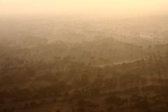 Light in the morning (deus77) Tags: morning trees light mist hot misty sunrise landscape view burma air balloon foggy aerial myanmar plains burmese fod bagan