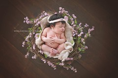 Little Bird (LaurenAlexisPhotography) Tags: wood flowers valparaiso nest indiana naturallight babygirl newborn chesterton nwi