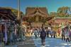 Plum Blossoms at Kitano Tenman-gū in Kyoto, Today. (KyotoDreamTrips) Tags: japan kyoto ume matsuri 北野天満宮 plumblossoms 梅花 baikasai 菅原道真 梅花祭 kitanotenmangū sugawaranomichizane
