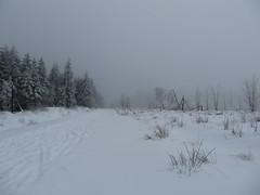 IMG_8553 (Bike and hiker) Tags: winter mist hiver sneeuw neige venn hoge hautes fagnes venen hohes botrange neur bayehon low