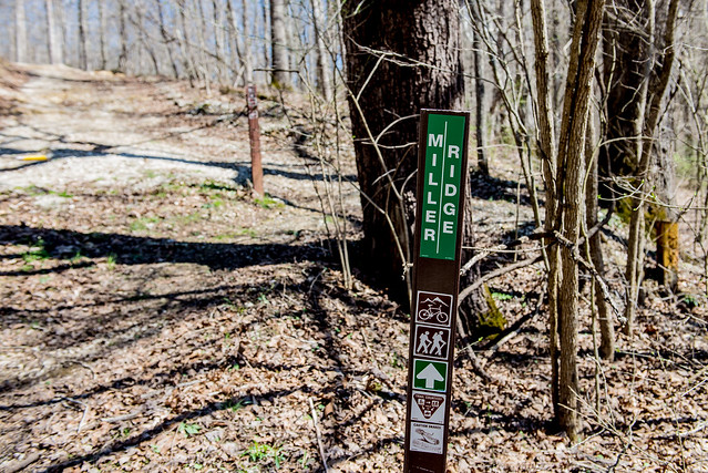 Hoosier National Forest - Miller Ridge - March 26, 2016