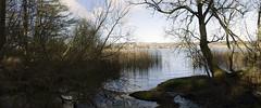 kilconquahar loch (stusmith_uk) Tags: landscape scotland fife february elie 2016 eastneuk kilconquaharloch