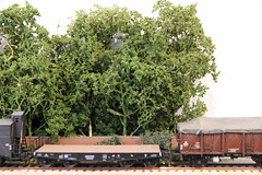 2016_03_28_Valkenveld Trees_31 (dmq images) Tags: railroad scale layout model railway 187 modelleisenbahn schaal modelspoor h0 valkenveld