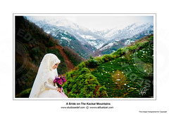 29 - A Bride on The Kackar Mountains (Studiosedef) Tags: wedding en mountain flower green love turkey germany studio photography groom bride engagement couple europa day fotograf fotografie photographer tea plateau tag paar professional ali story emotional dag hochzeit tee sari evlilik liebe trabzon dn  hava geschichte rize gzel yayla sedef braut brutigam outdoorwedding cicek nian fuat kackar professionell d  mekan  hikayesi ak fotoraflar grn profesyonel fotorafs  caylik  discekm