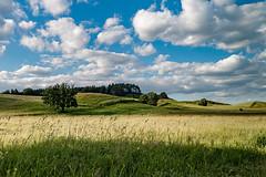 Hgelige Landschaft-Hilly Landscape (Jutta M. Jenning) Tags: blue green nature landscape outdoor sommer natur feld felder wiese wiesen himmel wolken polen blau landschaft baum gruen wandern baeume acker fruehling masuren aecker feldwirtschaft