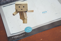 234/365 (tmp | photo) Tags: toy 365 leapyear danbo