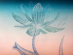 DSC09449 (scott_waterman) Tags: blue detail ink watercolor painting paper lotus gouache bluehue lotusflower scottwaterman
