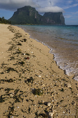 Afternoon at The Lagoon, Lord Howe Is (NettyA) Tags: day2 shells seaweed beach water coral clouds australia nsw unescoworldheritage lordhoweisland thelagoon lhi mtgower mtlidgbird lordhoweforclimate
