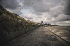 Beach. (ZjeromePhotography) Tags: life morning love nature freedom nikon oostende beack d600 freeyourmind calmedown