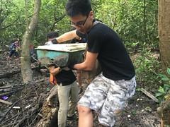 19-Env&CivSoc-World-Water-Day-LCK-Cleanup-26Mar16 (Habitatnews) Tags: mangrove capt nus worldwaterday limchukang iccs