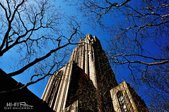 Higher Learning (Hi-Fi Fotos) Tags: trees sky building college architecture campus oakland nikon university pittsburgh branches gothic landmark limestone tall pitt imposing cathedraloflearning d5000 hallewell hififotos
