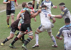 2016_04_02 Quins v Newcastle_18 (andys1616) Tags: newcastle rugby april stoop falcons aviva premiership twickenham quins 2016 harlequins rugbyunion
