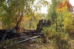 DSC_6030 (Rustam Bikbov) Tags: autumn september 2012    sverdlovskoblast