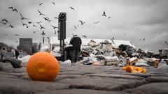 untiteld.jpg (Mette1977) Tags: street city people urban bw orange cloud colour candid hamburg streetphotography olympus hafen elbe fischmarkt 2016 microfourthird