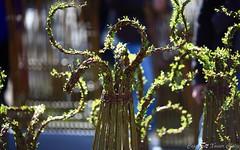 2016_04_10_st_jean_de_beauregar447 (Xavier_Claise) Tags: saint jean bokeh jardin fte horticulture dcoration ouverture plantes 135mm beauregard artisanat 2016 135mmf2 5dmarkiii