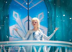 Elsa (littlesarahphotography) Tags: frozen orlando florida disneyland disney elsa letitgo disneyshollywoodstudios frozenparade