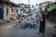 Early morning pigeon feeding time in Shan State, Myanmar. (Jeff Williams 03) Tags: woman myanmar pigeonfeeding shanstate