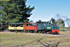 DS_Train_5_McLeansIsland_09April2016 (nzsteam) Tags: price train island traction engine railway scene steam engines locomotive boiler boilers mcleans sawmilling