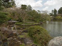 P1590713 (Rambalac) Tags: asia japan lumixgh4 pond water азия япония вода пруд