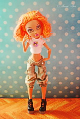 The ub (sonya.kosilina) Tags: monster high wolf howleen