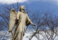 Laeken angel (Aramisse) Tags: brussels sky cemetery angel europe belgium belgique ange bruxelles ciel angelo engel laeken cimetire