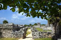 Recinto Ceremonial (Mal B) Tags: wall port mexico ruins maya tulum mayan iguana trade roo costal sites yucatanpeninsula quintana obsidian qroo nikond600 juandaz recintoceremonial 77780tulum precolumbianmayasitezama meaningcityofdawn zamameaningcityofdawn zamacityofdawn tulmyucatanmayanwordforfence wall1ortrench