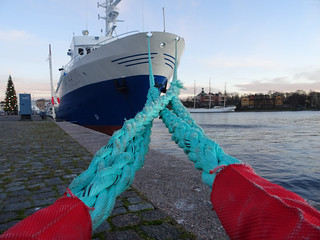 Ship Roped to Dock (Big Colorful Ropes!)