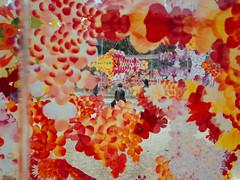 Setouchi 37 () Tags: sanna sejima kazuyo inujima