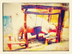 #PrimaveraEnGuadix (Barba azul) Tags: santiago flores primavera tom del de la canal martin y catedral valle andalucia pedro cielo hora sur antonio clowns nacional bodegas amistad circulo vino benitez periodismo premio potro ribera alhama grafitis refugiados alarcn herraje trogloditas accitano fardes cascamorras palenga comarcadeguadix marranadas caminomozarabedesantiago gastropensador