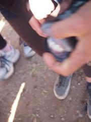 P4162107 (t_y_l) Tags: morocco marokko tinghir suq 2016 tinerhir