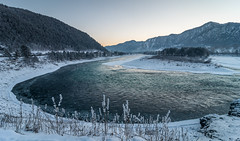 Altai () (Aleksei Zadonskii) Tags: travel winter sunset sun mountain snow mountains travelling ice nature beautiful beauty forest river season landscape evening photo nikon day seasons russia shoreline dream bank siberia shore russian taiga      altai    d90                  nikond90