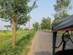 IMG_6923.jpg (Kuruman) Tags: sylhet bangladesh srimangal